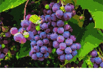 Needlepoint Kit or Canvas: Grapes In Vineyard