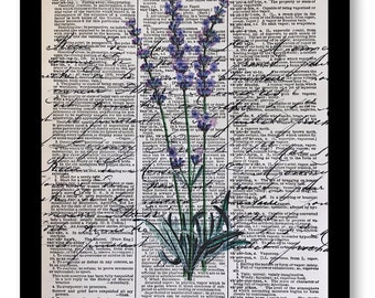 Lavender, Lavender Prints, Lavender Artwork, Dictionary Prints, Dictionary Print of Lavender, Purple Lavender, Dictionary art Prints