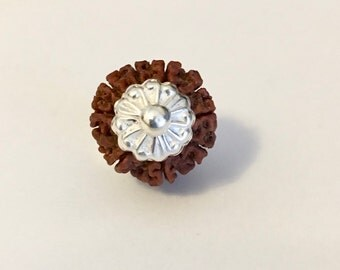 9 Mukhi Nepal Rudraksha in Sterling Silver - Energized - Private Grower - AAA+