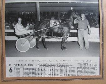 Horse Racing Photo Vintage Harness Racing Hinsdale Raceway New Hampshire Sulky Racing
