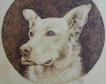 Pyrography - Custom Pet Portrait