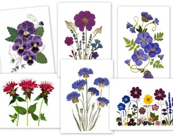 6 Assorted Notecards - Pressed Flower Cards - #089