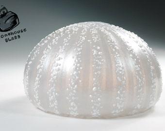 Sea Urchin vase. Soft Silver Gray with White. 217_0037