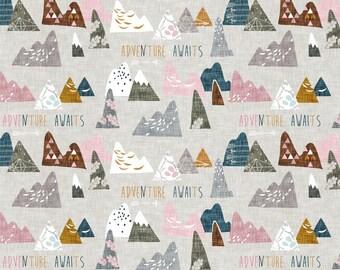 Adventure Awaits Minky Baby Blanket, Designer Minky Blanket, Personalized Minky Baby Blanket, Woodland Mountain, Pink