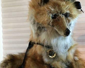 Soft Stuffed Taxidermy Fox, Foxy