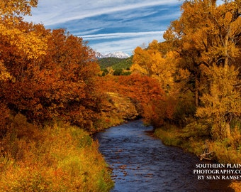 Fall Photography, Colorado Photography, Fall Prints, Autumn Photo, Fall Art, Photography Fall, Fall Foliage, Autumn Leaves, Print Nature