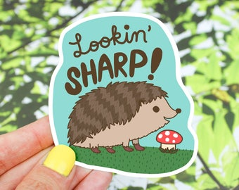 Hedgehog Sticker, MacBook Decals, Vinyl Sticker, Lookin' Sharp, Birthday Gift, Tumbler Decal, Gift For Her, Laptop Sticker, Car Decal, Cute