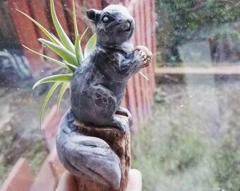 Squirrel planter, squirrel with acorn, squirrel totem, woodland animal, squirrel gift