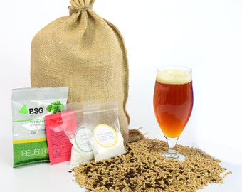 All-American Amber Ale One Gallon Beer Home Brewing Recipe Kit - 1 Gallon Small Batch Brewing Ingredient Kit