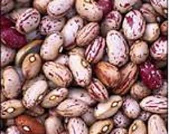 VBD)~LINA SISCO'S Bird Egg Dry Bean~Seed!!~~~ ~Pretty & Delicious!!