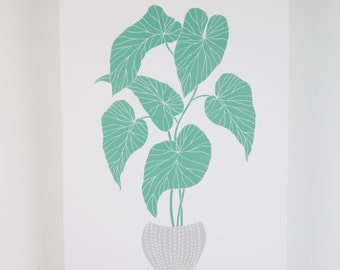 Begonia house plant giclee print, art print, plant lover A3