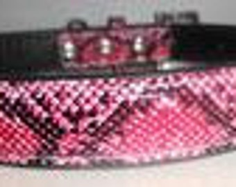 Pink Faux Snakeskin Dog Collar, 18 inch!