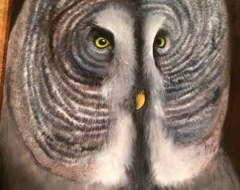 Fluffy Great Grey Owl Oil Painting - Original A1