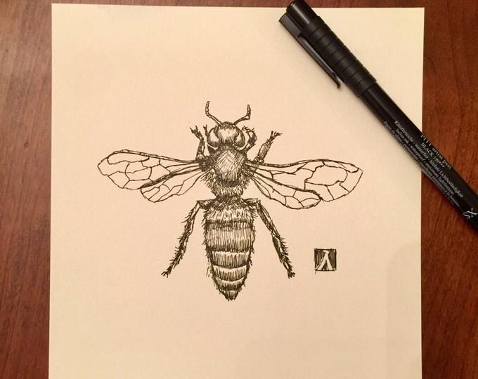 KillerBeeMoto: Original Pen Sketch of Honey Bee
