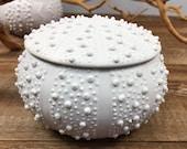 Ceramic Urchin Jar, White Porcelain Storage Jar, Hand Thrown White Jar, Small Handmade Pottery Jar, Salt Container, Sugar Jar, Pot with Lid