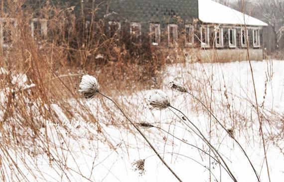 Abandoned Farm in Winter Sutton, MA 5x7 8x10 11x14