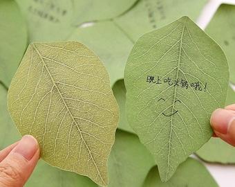 Cute leaf Post it/Stickies!
