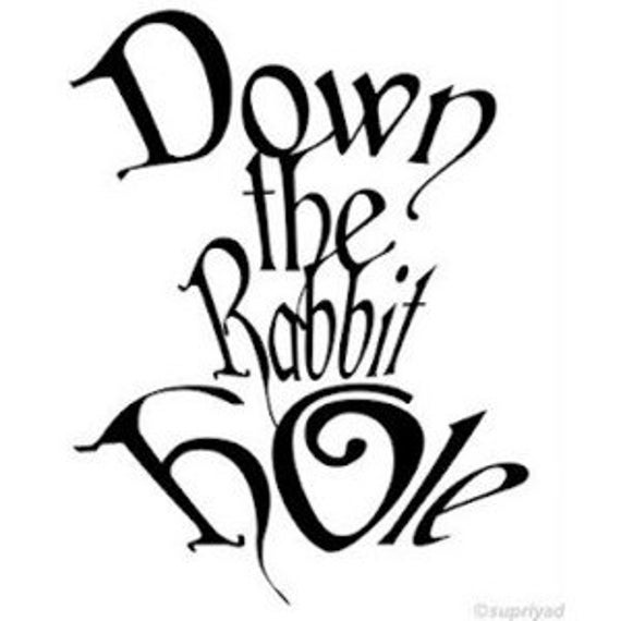 Image result for follow me into the rabbit hole