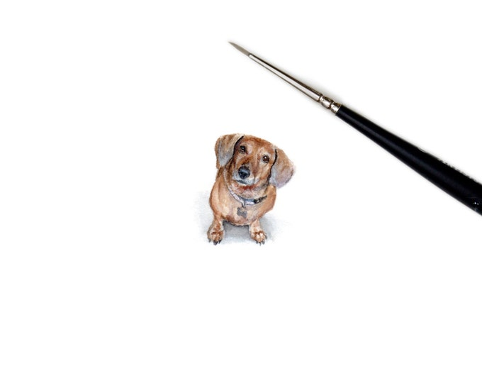 Print of Miniature painting of a Dachshund, tiny painting Dachshund Dog art 5 x 5