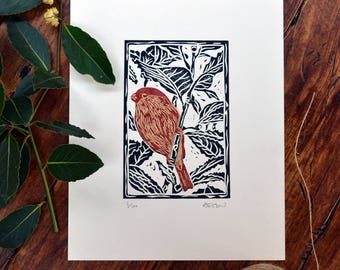 Bullfinch & bay - linocut print, black/red/gold, hand pulled, limited edition, British birds and gardens