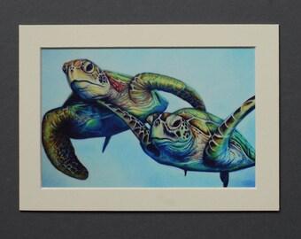 Sea Turtles Drawing Small Mounted Print