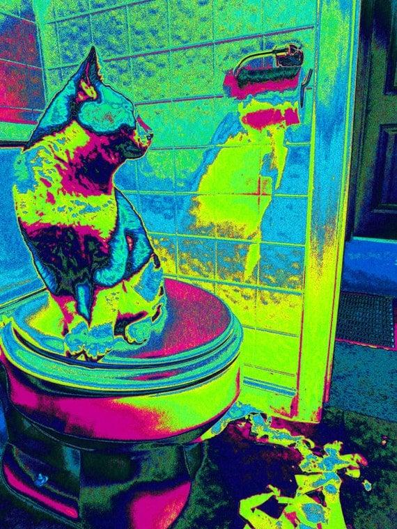 "Funny Cat Bathroom Art. Modern Cat Print. Cat Picture. Cat Artwork. Cat Humor. Cat Photograph ""Caught in the Act"". Funny Cat Portrait."