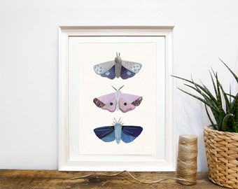 MOTH PRINT - Art Print, Collage, Illustration, Artist Print by Lianne Harrison, Moth, Moths, Insects