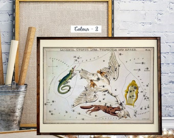 The Constellation, Astronomy,  Zodiac Map, Hand-Coloured Celestial Star Chart, The constellations Lacerta, Cygnus, Lyra, Vulpecula and Anser
