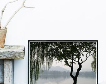 Tree Photo, Lake Print, Weeping Tree, Scandinavian Print,  Tree Art, Black And White Wall Art, Art Print, Giclee print,  Poster, Wall Decor
