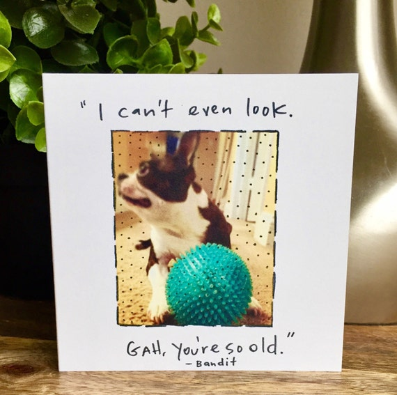 boston terrier birthday card, famous quote birthday, you're getting old, over the hill birthday card for him, card for her, boston terrier