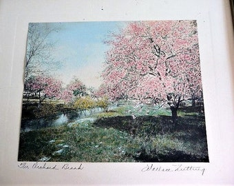 Wallace Nutting ...  Photo or Print ?    The Orchard Brook  --  Vintage Collectible ART