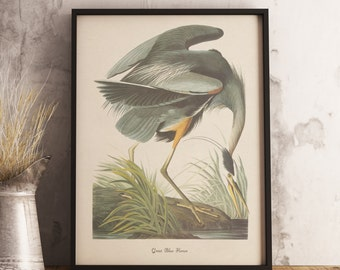 Great Blue Heron Print:INSTANT DIGITAL DOWNLOAD Bird print, Antique Bird Painting