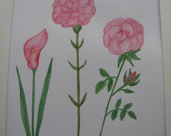 Pink Calla Lily, Carnation and Rose.
