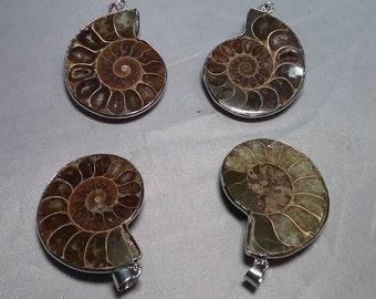 Ammonite Fossil Pendant approx 41×36×10mm