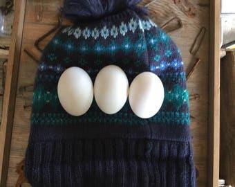 3PC. Hand-Blown Duck Eggs, Easter Eggs, Two Holes, Craft Eggs, Blown Eggs, Colored Eggs, White Eggs,