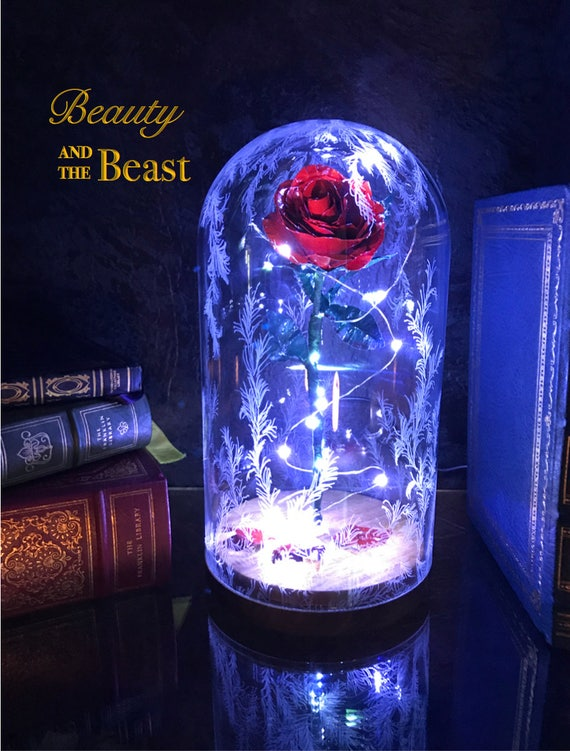 beauty and the beast rose dome preserved rose metal rose