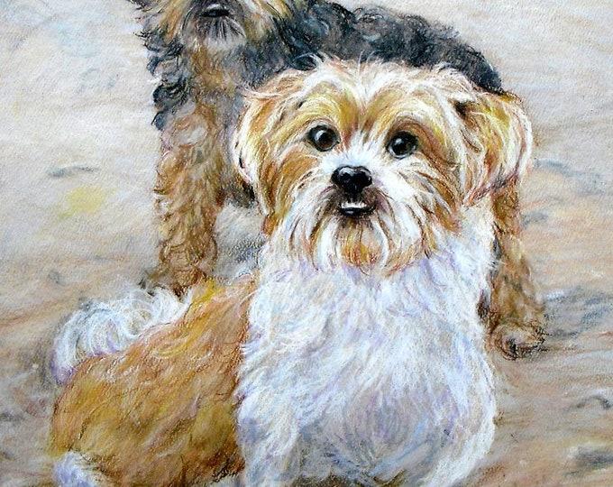 Custom Pet Portrait Original Drawing, by artist Robin Zebley, Christmas Gift for Dog Lover, Cat Art, Dog Art, Gifts for Him