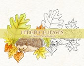 Digital Stamp Hedgehog Leaves, Autumn Fall Digi, Spring Nature, Cute Animals, Garden Leaf, Coloring Page, Scrapbooking, Instant download