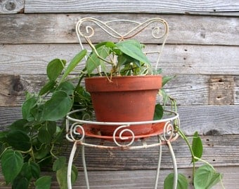 Vintage Rustic / Shabby Chic / Cottage Chic Iron Chair Planter / Plant Holder