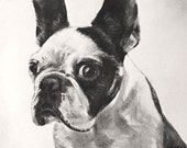 Custom portrait for Bonnie
