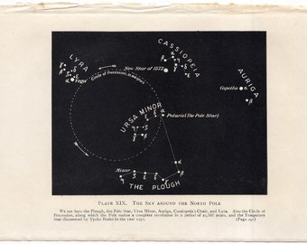 C. 1909  NORTH POLE STARS - original antique print - lithograph - astronomy celestial - the sky around the north pole - big dipper - plough