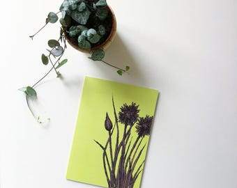 Chives greeting card garden notecard