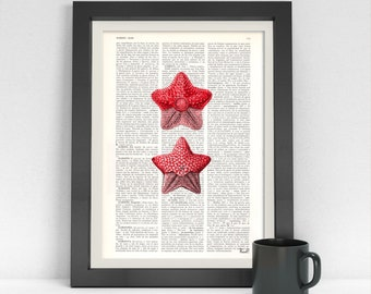 Summer Sale Starfish Pirnt, Dictionary Page Art print  Red star fish poste print, sealife print, Wall art home decor Bathroom SEA009
