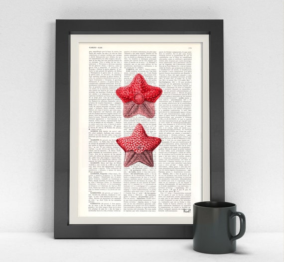 Red Starfish Wall Decor : Spring sale starfish pirnt dictionary page art print red