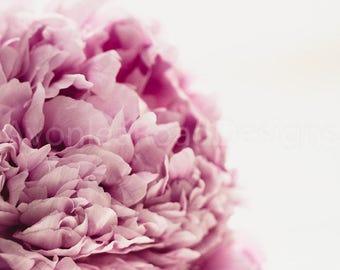 Fine art print, Wall art, Home decor, Pink peony, Floral, Photo print, Audrey