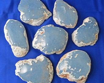 "1 ANGELITE Geode Half Polish Rough Raw Combination 3"" Guardian Angel Communication Spirit Guidance Healing Crystal and Stone #AG22"