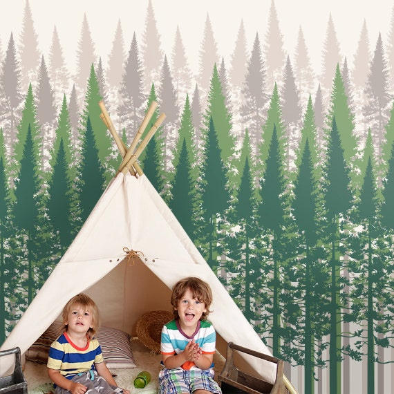 Forest Wallpaper Evergreen Tree For Home