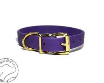 "Royal Purple 3/4"" (19mm) wide Beta Biothane Dog Collar - Leather Look and Feel -  Custom Sized Collar - Stainless Steel or Brass Hardware"