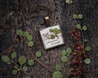 Twinflower Necklace - Pressed flowers jewelry - nature ecologist gift - botanist gift - Linnaea borealis