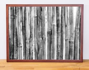 Thailand Bamboo, Photography Print, Black and White Wall Art, Thailand Photography, Travel Photography, Engineer Print, Digital Download